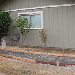 New Walkways And Patio For Rural Home In Vacaville