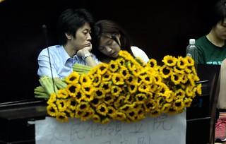 前立委邱毅誤認向日葵為香蕉