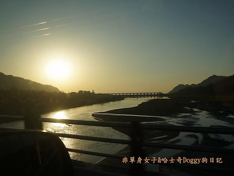 新社花海高美濕地金榜麵館33