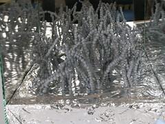 Mon, 01/01/2007 - 00:05 - Exif_JPEG_PICTURE