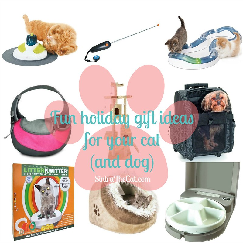 Sintra's Wishlist: Fun holiday gift ideas for your cat (and dog)