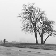 W in the Fog