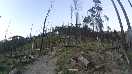 Trekk al Champaqui - 2016