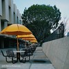 These representative yellow umbrellas at CSULA makes overcast days a little brighter. #losangeles #csula #goldeneagles #12blaxx