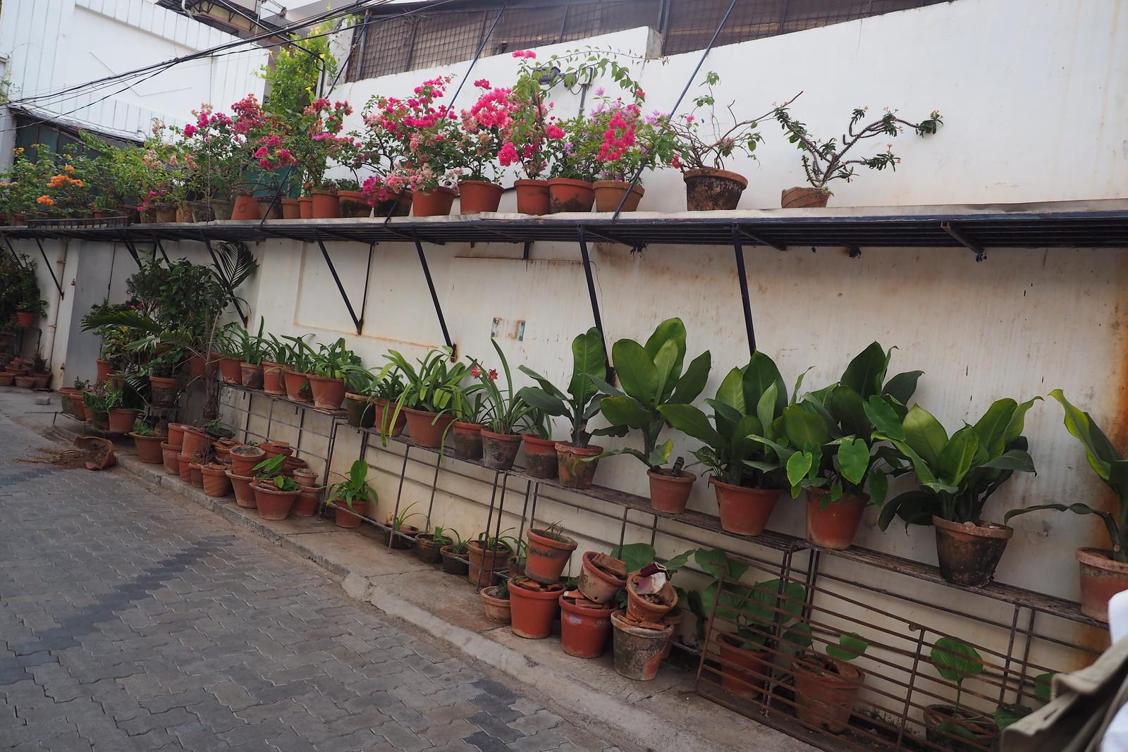 Kochi, Kerala, Indien