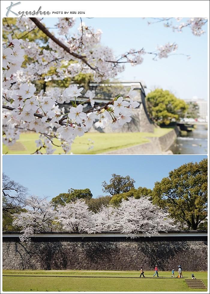 kyushu20140327019