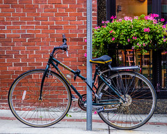 North End Bicycle