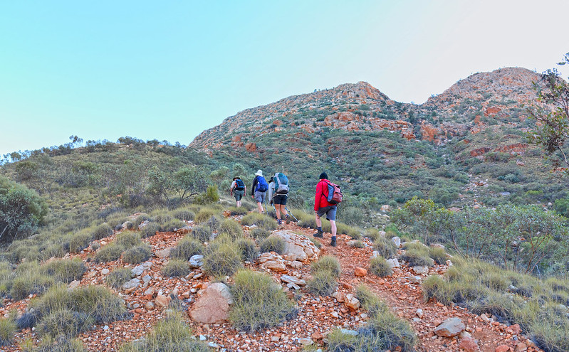 Chewings Range- Larapinta Trail