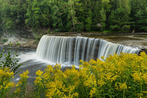 longexposure flowers trees summer yellow geotagged waterfall nikon paradise unitedstates michigan wildflowers tahquamenonfalls tahquamenonriver tahquamenonfallsstatepark uppertahquamenonfalls nikond5300