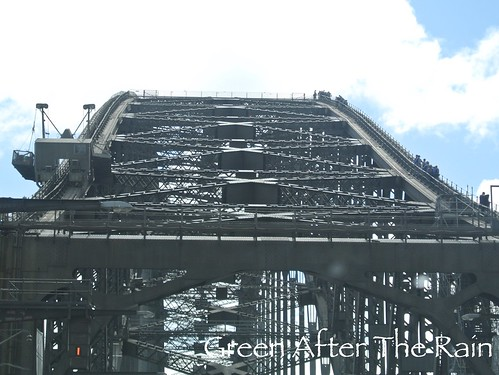 150919c Driving Sydney Bridge _03 (1)