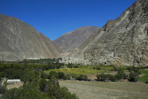 champs perú montagnes