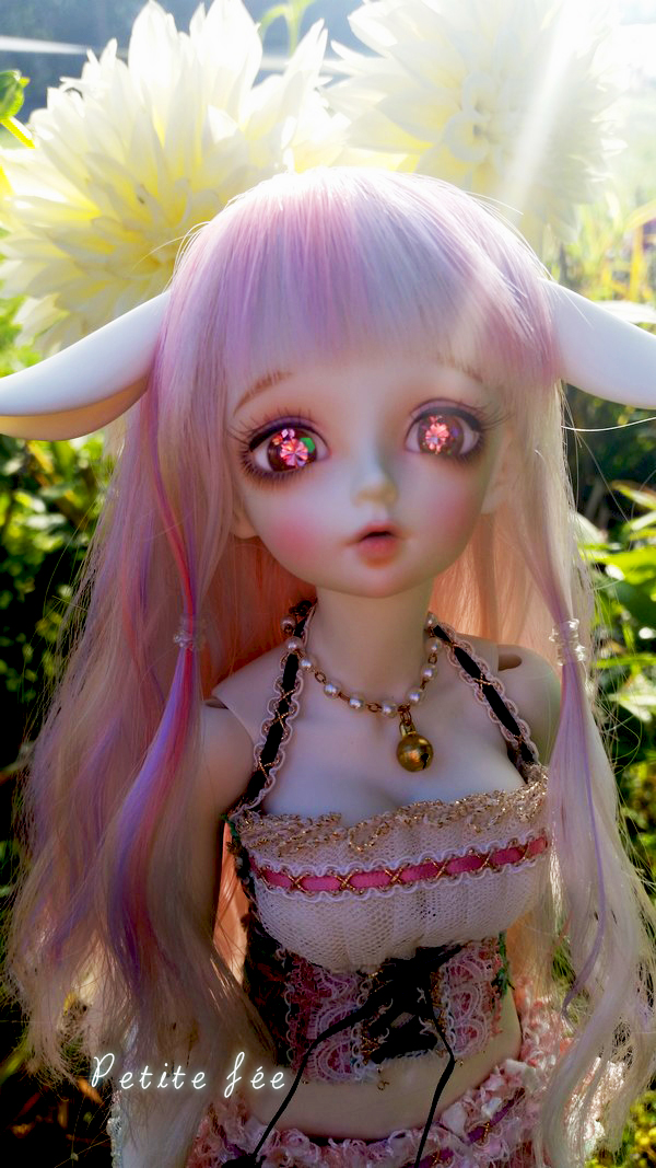 NEW DOLL: LDOLL ! ❤ Mes petites bouilles ~ NEWP.4 - Page 2 22209054438_562c1e5263_o