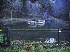 Clarence F. Pautzke Salmon Pond