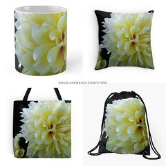 Yellow Dahlia Housewares and More! Available Exclusively from http://ift.tt/1hfrEWq Brighten up any home with these beautiful dahlias regardless of the season. #dahlia #flowers #garden #nature #products #cards #clothing #arts #crafts #technology #iphone #