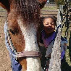 The KK & Wendell photo shoot continues  #horses #farmgirl #kkandmamaree #hangingwithmamaree #akaleirenee