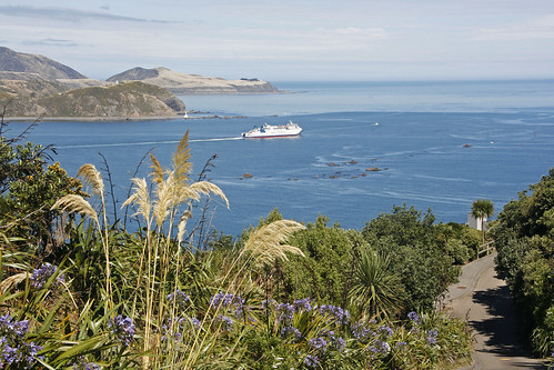 <p>An Interislander ferry heads out into Cook Strait on its way to the South Island from Wellington.  A real beautiful, calm day in the capital city.</p>