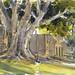 South Pasadena Library 2015 by VHein