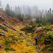 Rampart Ridge by SunilSwami