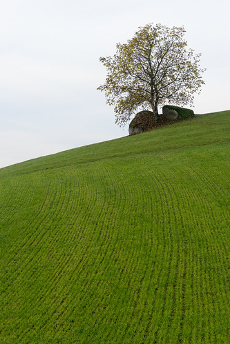 austria oberösterreich at naturfreunde höfnerberg