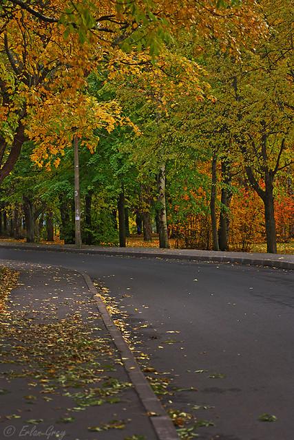 autumn_roads_04