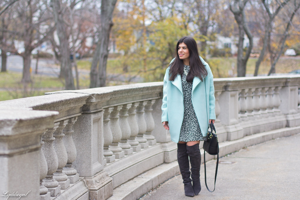 leopard print dress, mint green cocoon coat, over the knee boots-5.jpg