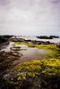 Oregon Coast by jamie.jones113