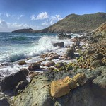 Morning hike -- Guana Bay, St. Maarten. As a writer, I dislike the cliché hidden gem, so let's say this area happens to be one of the island's unexpected pockets of rugged beauty. During our couple of hours walk with Joost, our Tri-Sport guide, we got