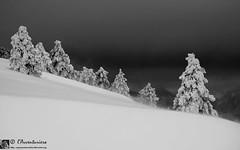 Monte Murano, la traversata invernale dell'abbondanza!
