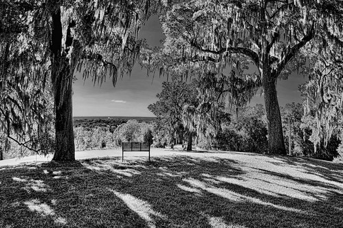 ironmountain lakewales boktowergardens sanctuary sunshinestate polkcounty nature scene geology centralflorida trees overlook bench spanishmoss shadows florida historical city cityscape urban downtown skyline centralbusinessdistrict skyscraper building architecture commercialproperty cosmopolitan metro metropolitan metropolis realestate commercialoffice modernism postmodern modernarchitecture lakewailes