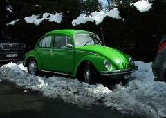 VW + Audi
