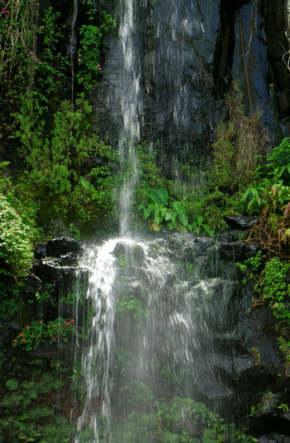 Waterfall At Blue Pool  Maui