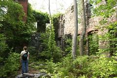Mansion Walls