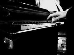 musician, white, pianist, piano, musical keyboard, keyboard, jazz pianist, monochrome photography, monochrome, black-and-white, black,