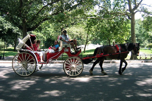 nyc central park horse drawn carriage flickr photo sharing. Black Bedroom Furniture Sets. Home Design Ideas