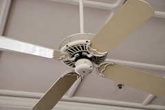daylighting(0.0), wing(0.0), propeller(0.0), ceiling fan(1.0), ceiling(1.0), mechanical fan(1.0), home appliance(1.0),
