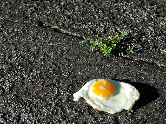 茶葉蛋、蛋餅、荷包蛋、蒸蛋,我們這麼愛吃蛋,該怎麼挑安全的蛋?