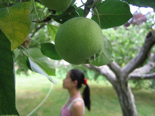 Una manzana y una chinita :-)