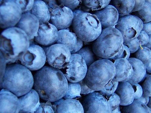 _Blueberries 2