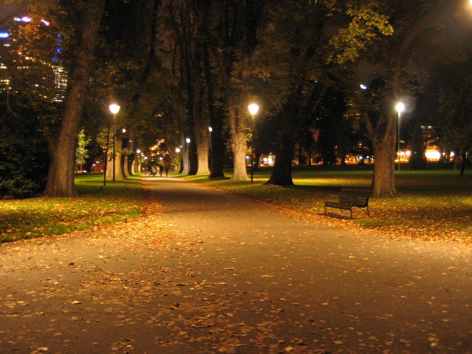 Хорошего отдыха, картинки красивая ночь в парке