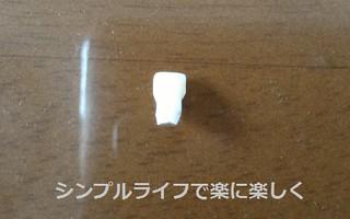 初めて抜けた乳歯