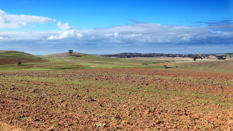 Tilled land