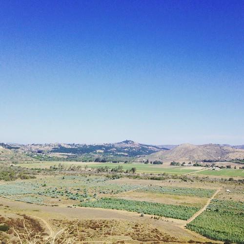 San Pasqual Valley #seenbybike