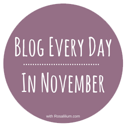 Blog Every Day in November With Rosalilium
