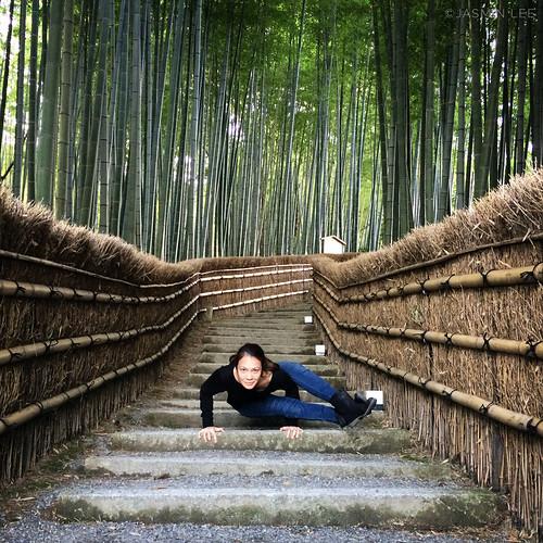 Astavakrasana at Adashino Nenbutsu-ji bamboo path