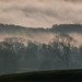 Ribble Valley misty morning