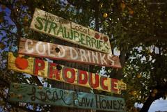 Farm stand fresh....