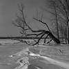 Frozen Ottawa River