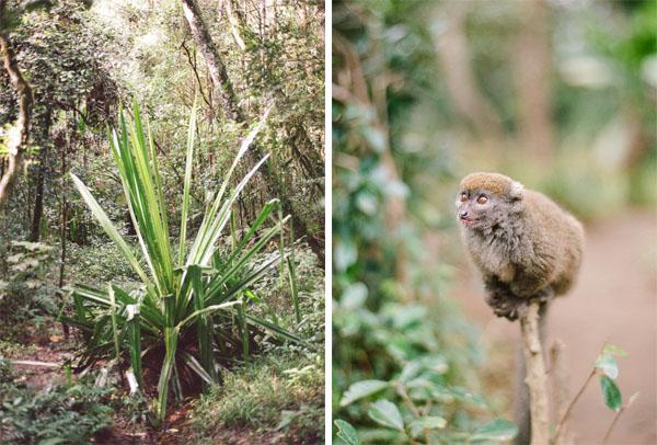 RYALE_Madagascar_Blog2_017