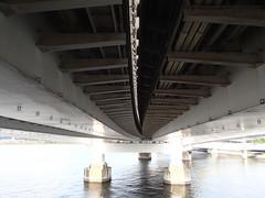 東京湾虹橋散歩 - naniyuutorimannen - 您说什么!