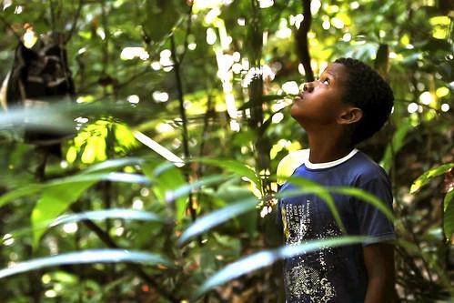 Choco Darien Conservation Corridor REDD+ Project